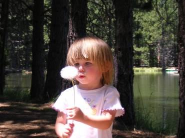 Evaluare IQ copii pentru supradotare